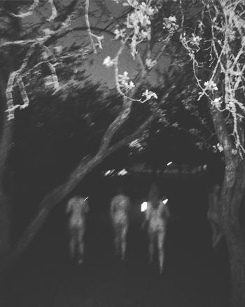 Omenapuutarhassa.